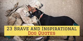 Dog Quotes Inspirational Magnificent 48 Brave And Inspirational Dog Quotes SayingImages