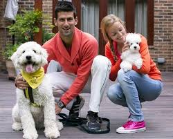Son, daughter, parents, brother, father, mother.familyfather.srdan. How Novak Djokovic S Wife Jelena Djokovic Influences His Career Essentiallysports