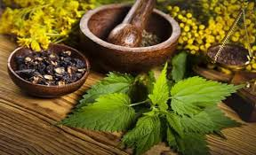 Image result for natural therapies