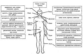 Синдром коматозных состояний Коматозное состояние кома полное  Рис 12 Схема обследования пациента находящегося в коме