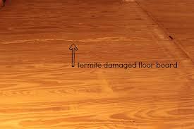 hardwood floor restoration termite damage repair