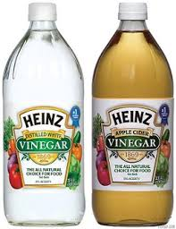 Image result for free pics of white vinegar