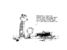 Calvin And Hobbes In Universe / Headscratchers - TV Tropes