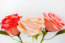 Diy Giant Paper Rose Flower Diy Giant Crepe Paper Roses