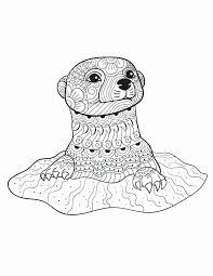 Kawaii coloring pages free printable realistic coloring pages lovely. Realistic Animal Coloring Pages Meriwer Coloring