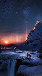 wallpaper 1080x1920 deer, winter, night ...