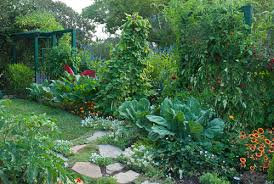 edible landscape plants florida. edible landscaping, rosalind creasy, vegetable gardening, fruits: gardener\u0027s supply landscape plants florida
