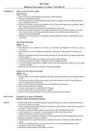 Outlets Manager Resume Samples Velvet Jobs