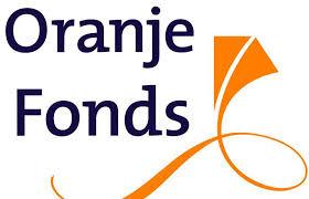 Afbeeldingsresultaat voor nl doet logo