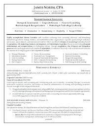 It Consultant Resume Sample Business Consultant Resume Thrifdecorblog Com
