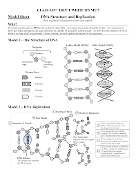 dna molecule and replication worksheet switchconf worksheet label the parts of the dna molecule dna replication