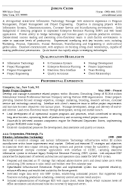 Program Manager Resume Stunning IT Manager Resume Example