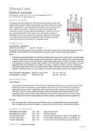 Healthcare Resume Template