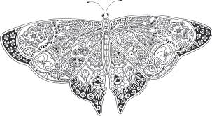 Small Picture Butterfly Coloring Pages For Adults 3415 With itgodme