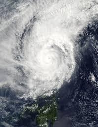 พายุไต้ฝุ่นหมุ่ยฟ้า (พ.ศ. 2547) - วิกิพีเดีย