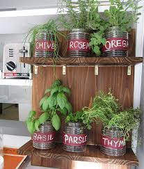 how to make an indoor herb garden. Exellent Herb Football Parties Are In Full Swing And The Holidays Just Ahead When  You Grow Your Own Herbs Indoors Itu0027s Easy To Pick Fresh Cilantro Whip Up A  And How To Make An Indoor Herb Garden U