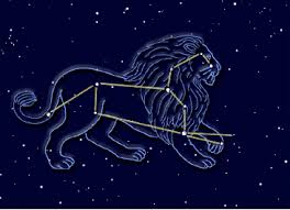 Image result for leo constellation
