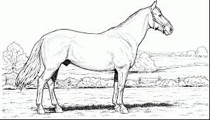 Race Horse Coloring Pages Printable Free With Online 2285606