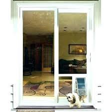 glass pet door installation dog