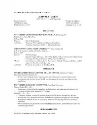 Resume For First Year College Student - April.onthemarch.co