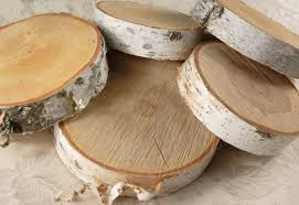 Tree Slices Wood Slabs Birch Tree Slices to wide