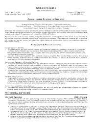 Monster Resume Templates 11