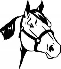 Indian War Horse Paint Chart Horse Breed Descriptions