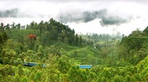 sri lanka s railway system may not as por as most other transport methods on the island but it is very affordable enjoyable and convenient if you use