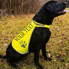 <b>DOG High vis</b> Safety Vest Custom Printed Any Photo <b>Pet Hi-Vis</b> ...