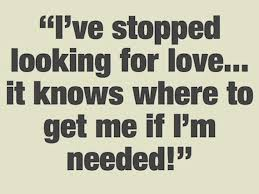 Looking For Love Quotes Awesome Quote About Looking For Love Endearing Looking For Love Quotes