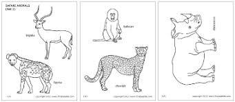 Safari Animals Template Safari Or African Savanna Animals Printable Templates Coloring