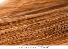 Hair Dye Colors Chart Auburn Hair Color Chart Red Hair Dye