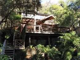 1331 Best Tree Houses Images On Pinterest  Treehouses Trees And Treehouse Accommodation Nsw