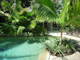 Small Picture Cozy Tropical Landscaping Ideas Tropical Paradise in Your Garden