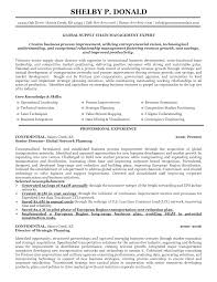 Supply Chain Resume Resumes Skills Keywords Examples Executive