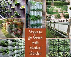 vertical gardens creative green