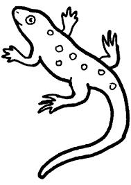 Coloriage Lezard Coloriage Sur Hugolescargot Com