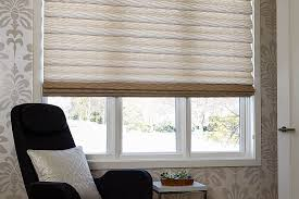 Inexpensive Patterned Roman Shades