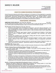 General Resume Outline Hotel General Manager Resume Template Assistant Sample