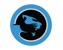 Reactions To The New Carolina Panthers Logo - Cat Scratch Reader