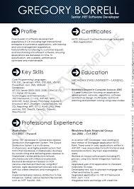 Software Engineer Resume Samples Gorgeous Pin By Software Engineer Resume Template On Software Engineer Resume