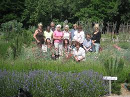 Kitchen Garden Blog Chiswick House Kitchen Garden Tdks Blog