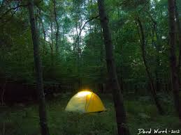 camping in the woods at night.  Woods Glowing Tent At Night Exposure Stars Forest Dark With Camping In The Woods At Night