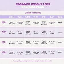 workout plans beginner weight loss