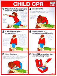Details About Child Cpr First Aid Instructional Wall Chart Poster Arc Aha Guidelines