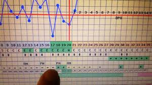 Bbt Chart Bfp Bfp Bbt And What We Did Different Youtube