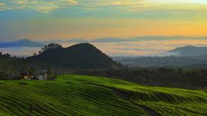 Image result for about Bandung