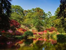Small Picture 107 best Exbury Gardens images on Pinterest Flowers Beautiful