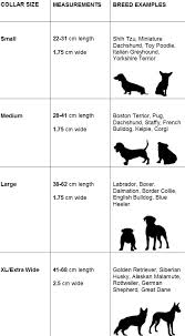 Alaskan Malamute Size Chart Unique Dog Collars Pet Supplies Hearts Hounds Sizing