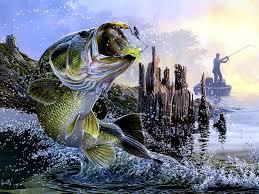 bass fishing lake sunset fisherman painting art wall
